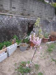 2010_015